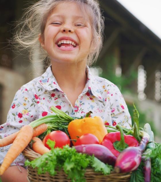 atelier éducatif alimentation nutrition école