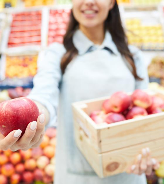 dietanim conseil diététique
