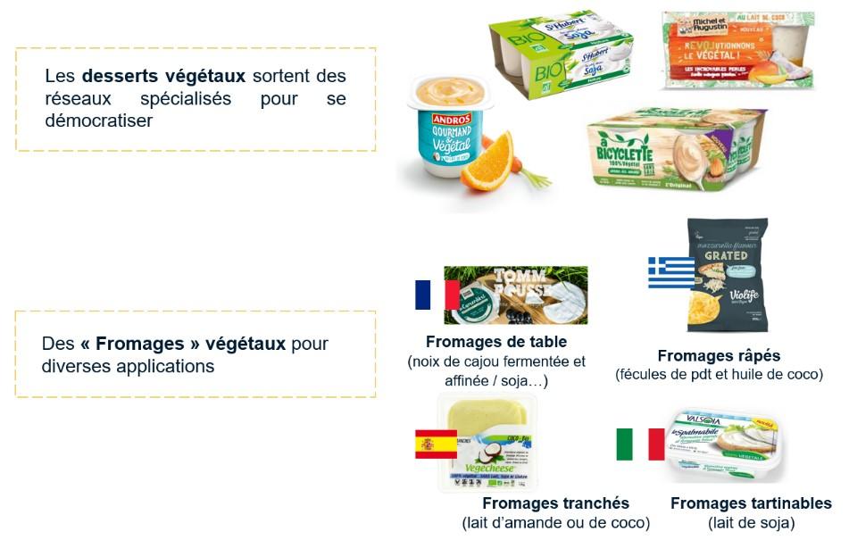 substitut aux produits laitiers